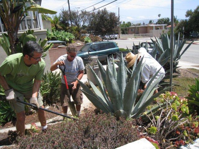 Botanical garden gets the green green idea house - Manhattan beach botanical garden ...